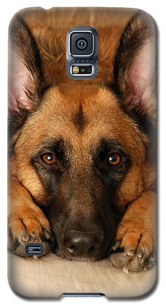 My Loyal Friend Galaxy S5 Case
