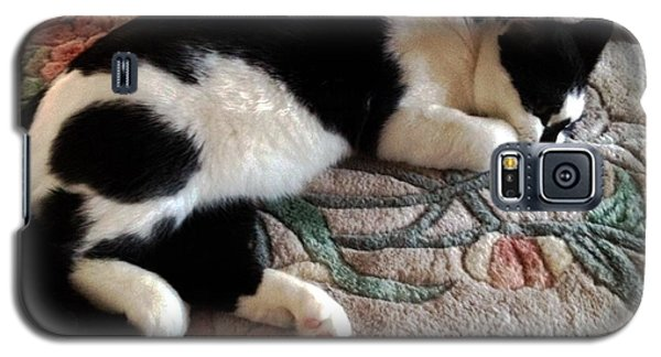 Galaxy S5 Case featuring the photograph My Sleeping Cat by Vicky Tarcau