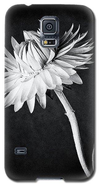 My Straw Hat Galaxy S5 Case