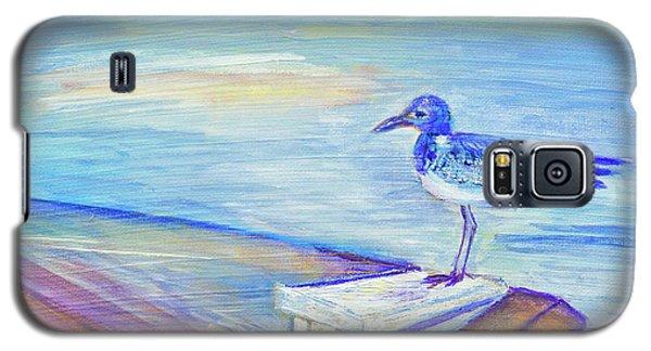 My Tern 3 Galaxy S5 Case