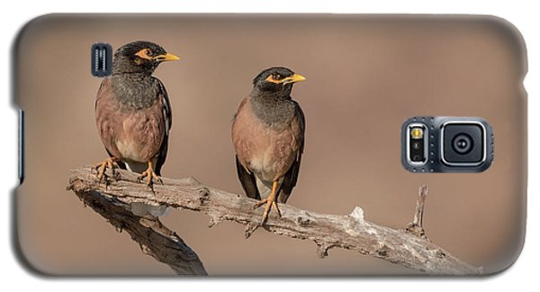Myna Pair Galaxy S5 Case