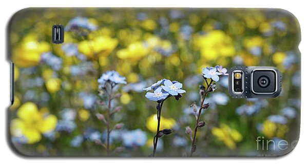 Myosotis With Yellow Flowers Galaxy S5 Case