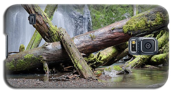 Mysteries In The Rainforest Galaxy S5 Case