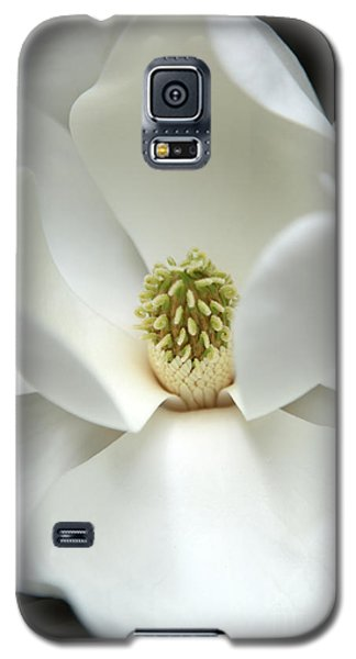 Magnolia Galaxy S5 Case - Mysteriously by Amanda Barcon