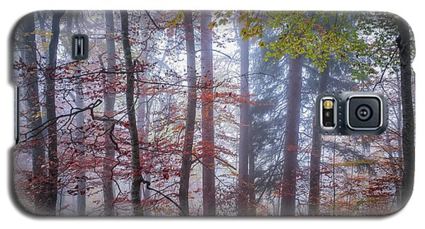 Galaxy S5 Case featuring the photograph Mystery In Fog by Elena Elisseeva