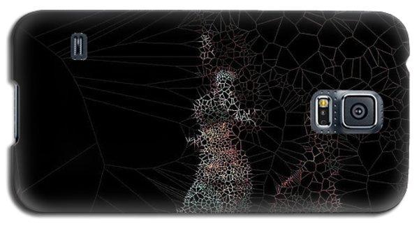 Mystery Galaxy S5 Case