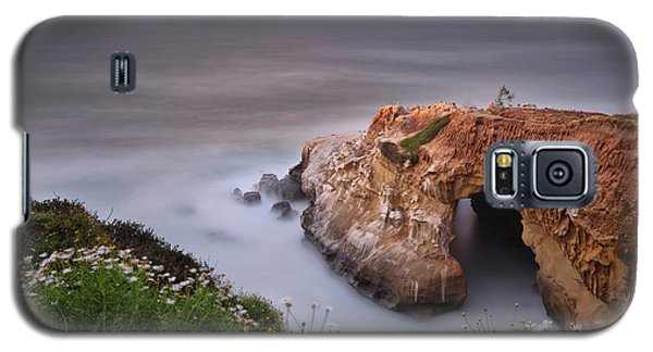 Seagull Galaxy S5 Case - Mystical Cave by Larry Marshall