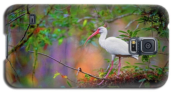 Mystical White Ibis Galaxy S5 Case