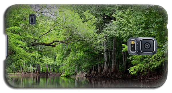 Mystical Withlacoochee River Galaxy S5 Case