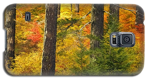 N W Autumn Galaxy S5 Case