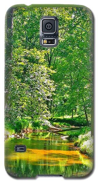 Nadine's Creek Galaxy S5 Case