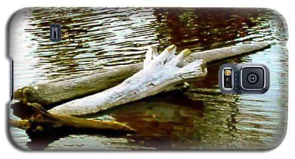 Galaxy S5 Case featuring the photograph Nailbiting Driftwood by Sadie Reneau