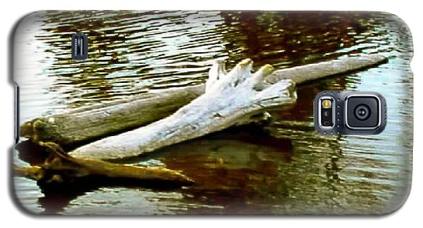 Nailbiting Driftwood Galaxy S5 Case by Sadie Reneau