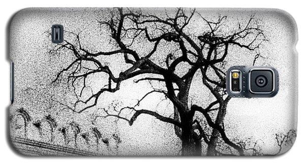 Naked Tree Galaxy S5 Case