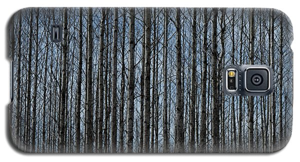 Naked Woods Galaxy S5 Case