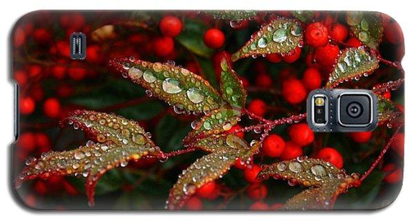 Nandinas In The Rain Galaxy S5 Case