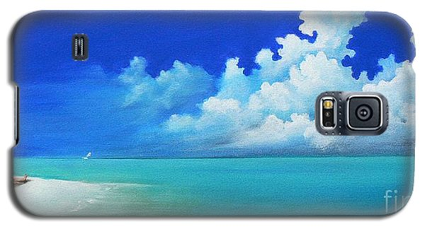 Nap On The Beach Galaxy S5 Case