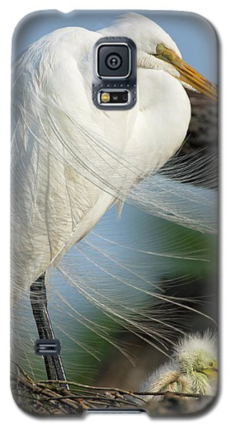 Nap Time Galaxy S5 Case