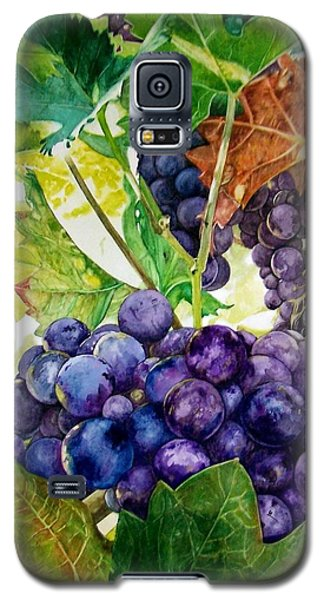 Galaxy S5 Case featuring the painting Napa Harvest by Lance Gebhardt