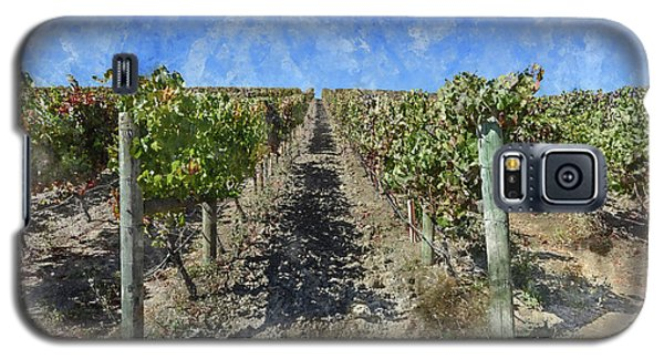 Napa Valley Vineyard - Rows Of Grapes Galaxy S5 Case
