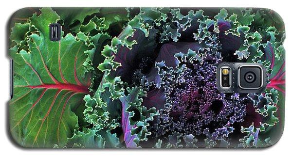 Naples Kale Galaxy S5 Case