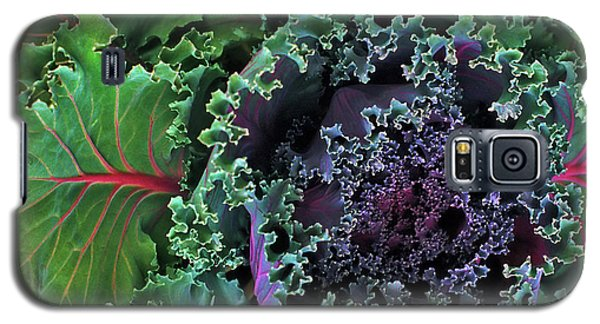 Naples Kale Galaxy S5 Case