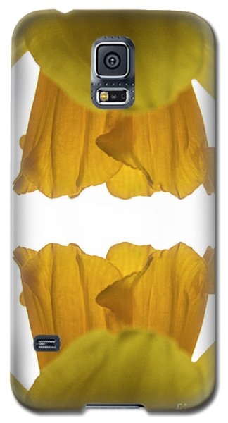 Narcissus Galaxy S5 Case