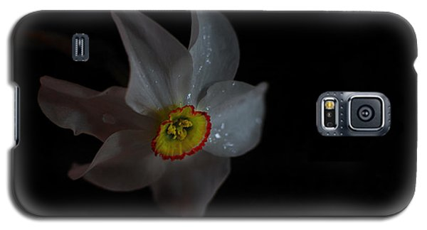 Galaxy S5 Case featuring the photograph Narcissus by Susan Capuano