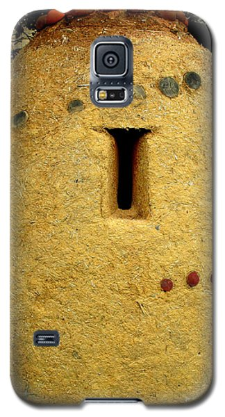 Smithsonian Museum Galaxy S5 Case - National Museum Of The American Indian 4 by Randall Weidner