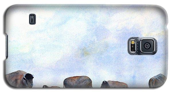 National Treasure - Bison Galaxy S5 Case