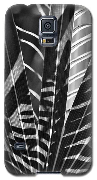 Natural 10 17c Galaxy S5 Case