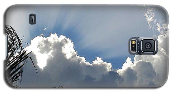 Natural 11 11 Galaxy S5 Case