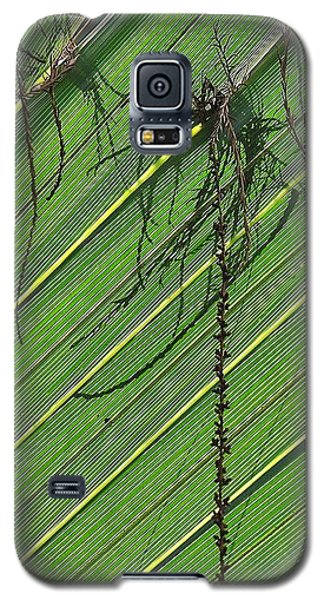 Natural 11 15b Galaxy S5 Case