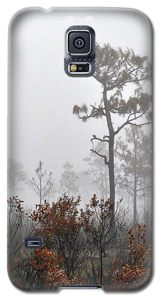 Natural 2 13 Galaxy S5 Case