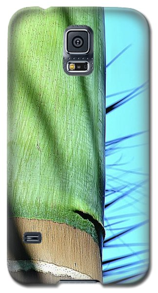 Natural 5 16b Galaxy S5 Case