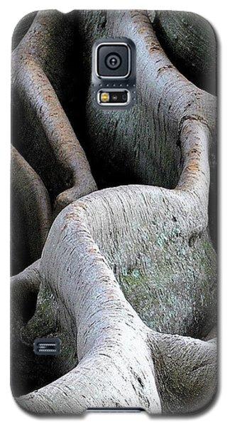 Natural 11 13 Galaxy S5 Case