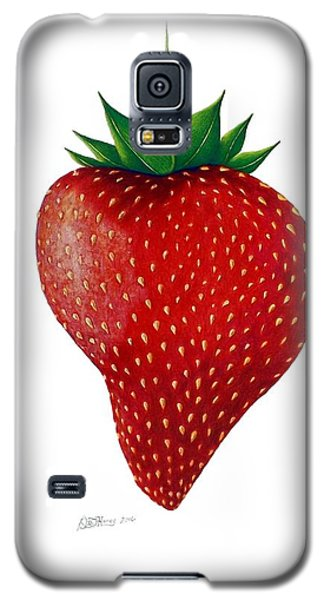 Natural Beauty Galaxy S5 Case by Danielle R T Haney