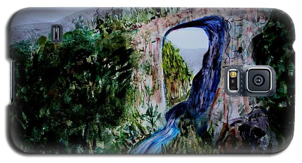 Natural Bridge In Virginia Galaxy S5 Case by Donna Walsh