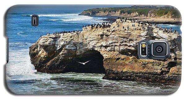 Natural Bridges Santa Cruz Galaxy S5 Case