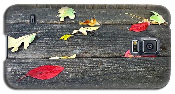 Natural Fall Galaxy S5 Case