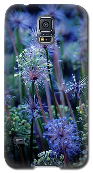 Natural Fireworks 4791 H_2 Galaxy S5 Case