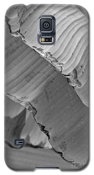 Natural Shingles Galaxy S5 Case by Tim Good