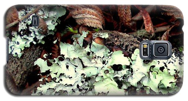 Natural Still Life #1 Galaxy S5 Case