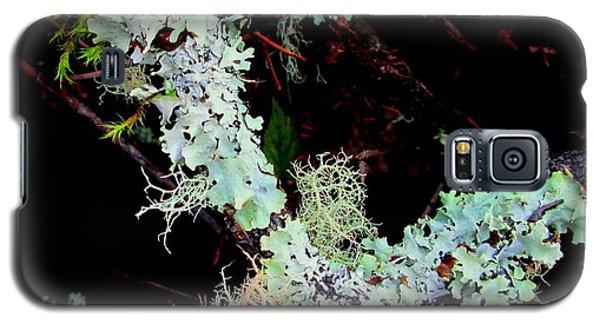 Natural Still Life #2 Galaxy S5 Case