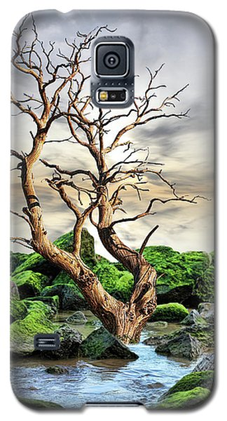 Galaxy S5 Case featuring the photograph Natural Surroundings by Angel Jesus De la Fuente
