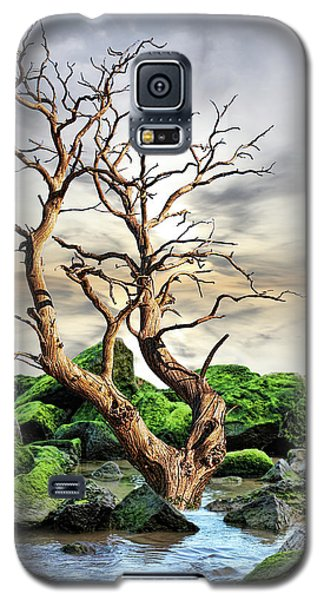 Natural Surroundings Galaxy S5 Case