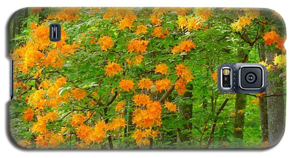 Galaxy S5 Case featuring the photograph Natural Wild Azaleas  by Rand Herron