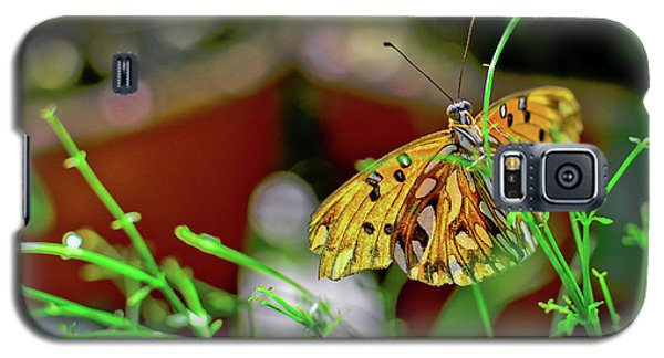 Nature - Butterfly And Plants Galaxy S5 Case