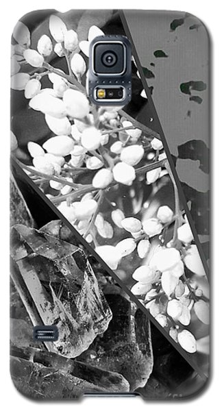 Nature Collage In Black And White Galaxy S5 Case