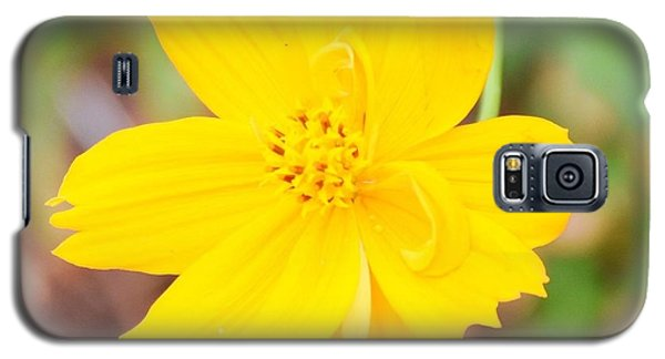 Galaxy S5 Case featuring the photograph Nature Colorful Flower Gifts - Yellow by Ray Shrewsberry